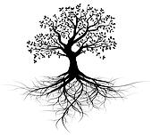 whole vector black tree with roots