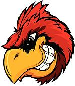 Cardinal or Red Bird Head Cartoon