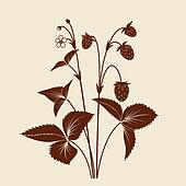 Strawberry shrub silhouette isolated