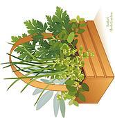 Herb Garden in Wood Basket