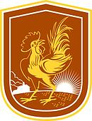 Chicken Rooster House Sunburst Shield Retro