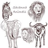 Collection of vector hand drawn savanna animals for design