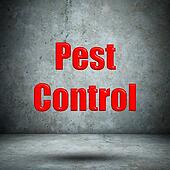 Pest Control concrete wall