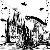 River predator