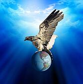 Eagle and earth