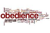 Obedience word cloud