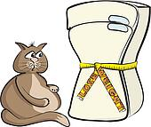 lose weight - cat glutton