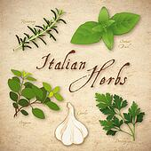 Italian Cooking Herbs