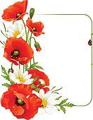 Vector flower frame 8. Poppy and Ca