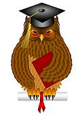 Wise Old Owl with Graduation Cap and Diploma Illustration
