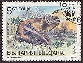 BULGARIA - CIRCA 1989: A post stamp printed in Bulgaria shows  bat . circa 1989.