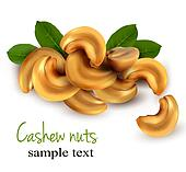 Cashew nuts  Vector illustration