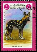AFGHANISTAN - CIRCA 1984 African hunting dog