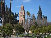 Mosque minaret and park in Marrakech