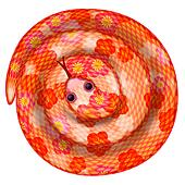 Coiled Chinese New Year Snake Illustration