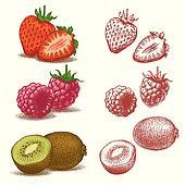 Strawberry, Raspberry, Kiwi