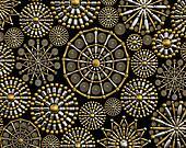 Creative jewelry ornament background