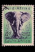 South Africa Postage Stamp African Elephant 1954