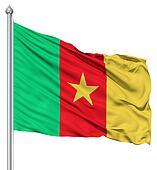 Waving Flag of Cameroon