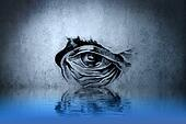Tattoo animal eye on blue wall with water reflections