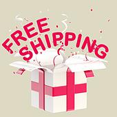"""Word """"free shipping"""" inside a gift box"""