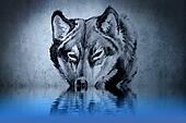 Tattoo of a wolf's head with water reflections