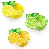lemon lime orange