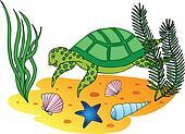 Aquatic turtle in the ocean