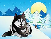 Dog lying in snowy landscape