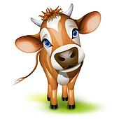 Little jersey cow