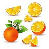 Fresh orange with flowers