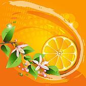 Background with orange slice