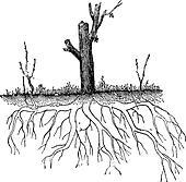 Natural Ground Layering, vintage engraving