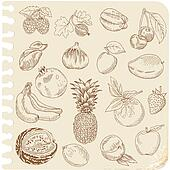 Set of Doodle Fruits - for scrapbook or design - hand drawn in vector