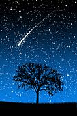Tree Under Stars with shooting stars at night