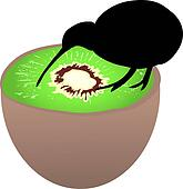 Kiwi bird sitting on kiwi