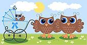 a cute little owl family
