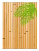 Bamboo and Palms