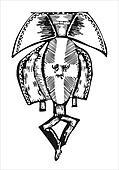 Vector African head sculpture