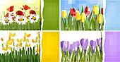 Set of nature backgrounds