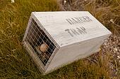 Small animal trap with written warning for humans