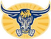 Angry Texas Longhorn Bull Head Front