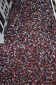 Crowd Celebrates at Parade