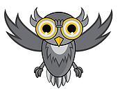 owl fly