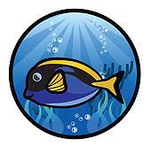 The Marine Fish