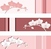 Flower vector background.