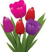 vector bunch of tulips