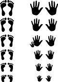 Foot and palm silhouettes of toldler, kid and adult