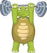 Funny Turtle. Gym.