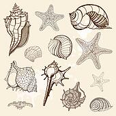 Sea collection. Hand drawn vector illustration